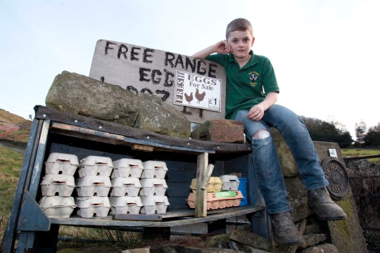 William Mullin, 11,of Binns Road, Marsden, near Huddersfield who set up a stall selling eggs but has been repeatedly targeted by thieves. Credit: MEN/Huddersfield Examiner