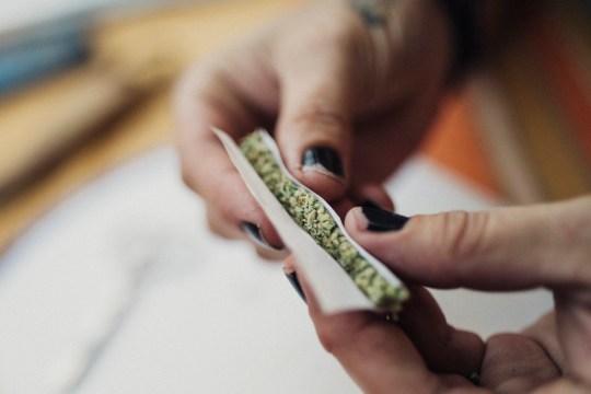 Get paid to roll spliffs Alternative medicine