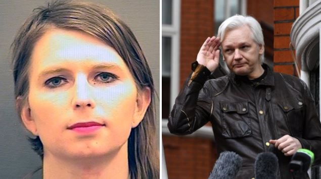 US whistleblower Chelsea Manning jailed for refusing to testify in Wikileaks case