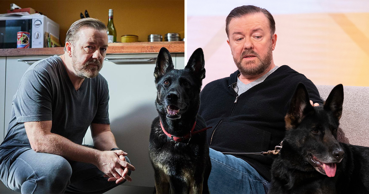 If only someone could love us as much as Ricky Gervais loves Tony's dog from After Life