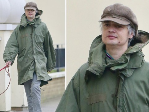Pete Doherty looks far from 00s rockstar on 40th birthday as he takes pet Huskies for walk