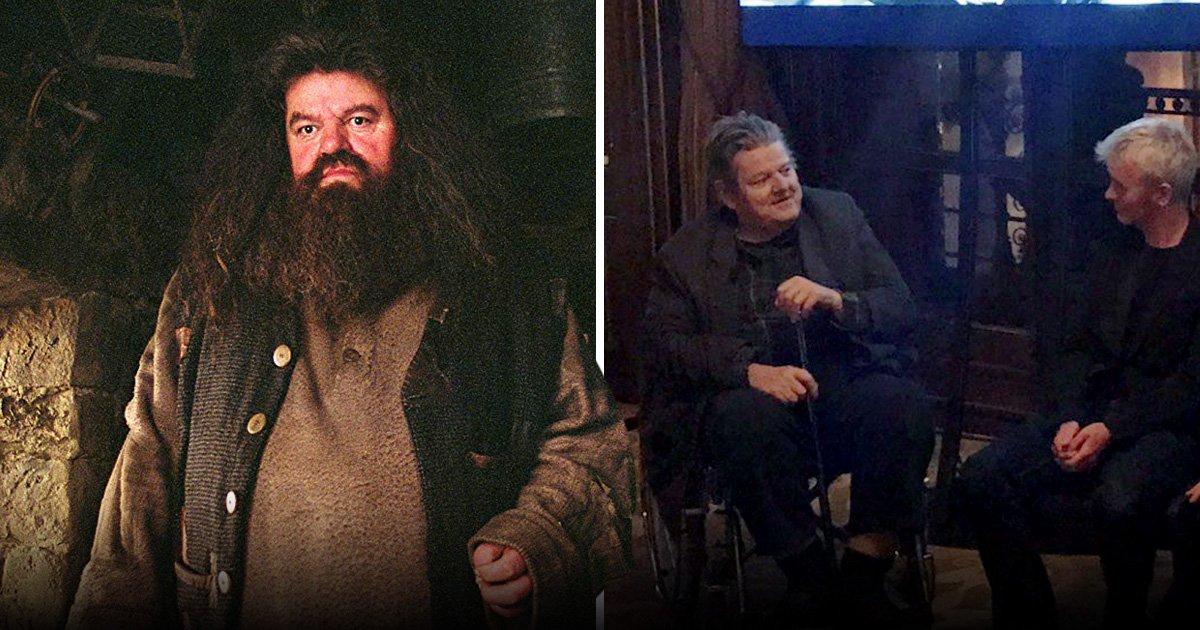 Harry Potter's Robbie Coltrane left in wheelchair after crippling battle with osteoarthritis leaves him in excruciating pain