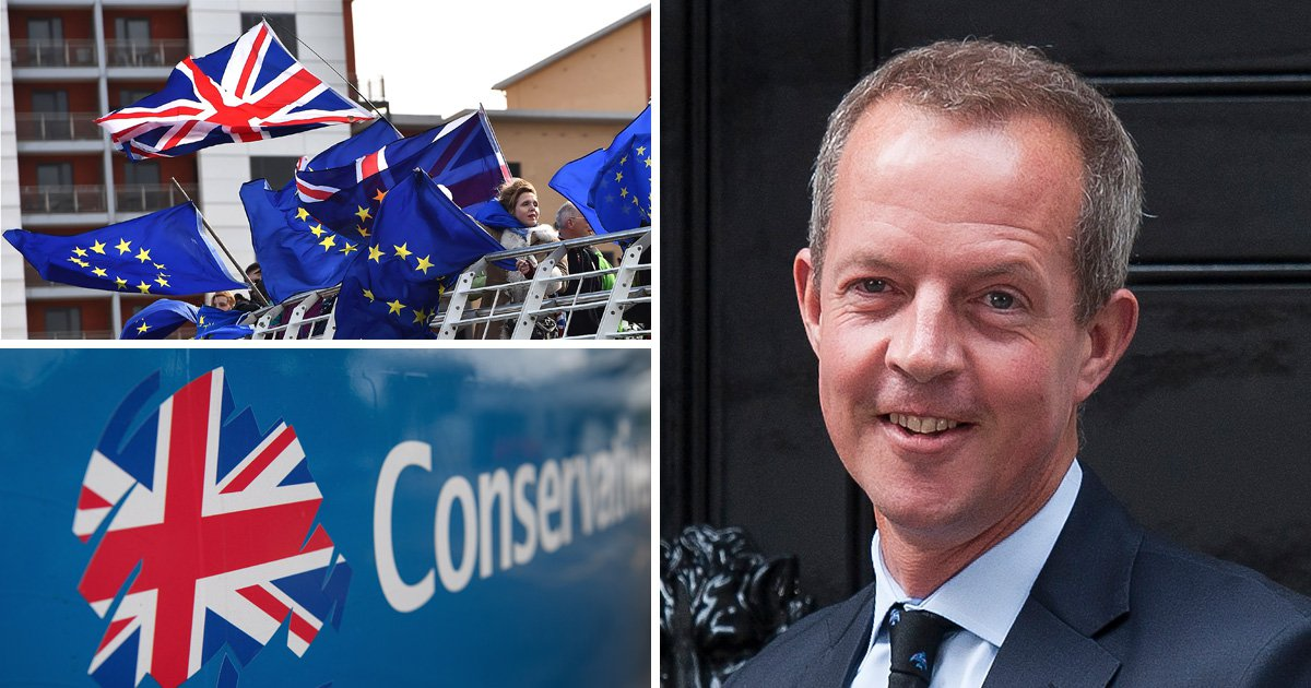 Pro-EU former Tory minister Nick Boles quits local party over Brexit