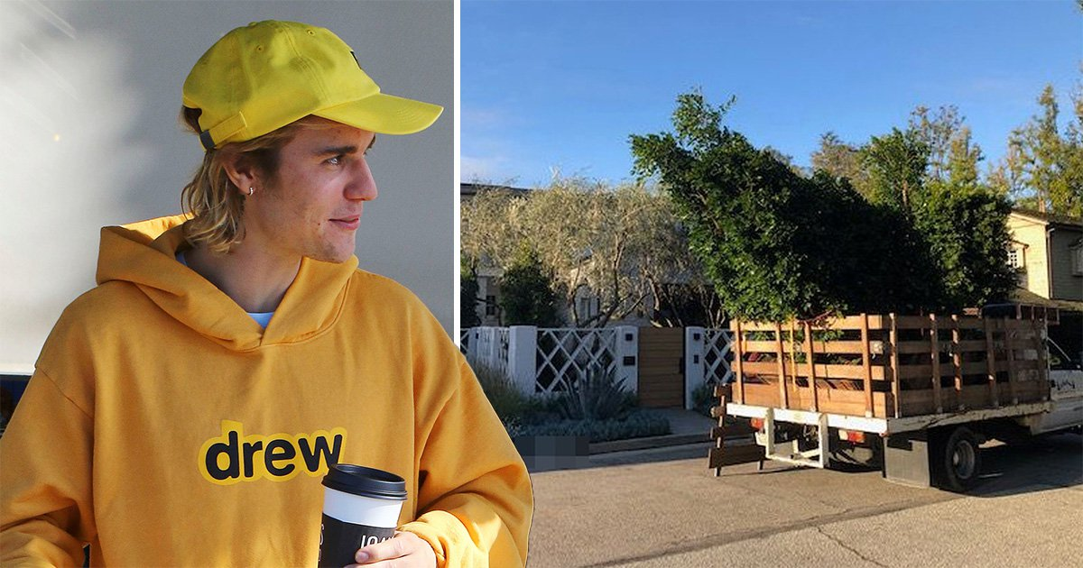Justin Bieber buys $8.5million Beverly Hills mansion and he doesn't want any prying eyes