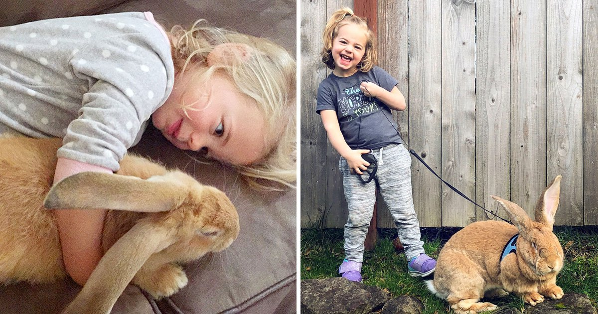 Little girl becomes unlikeliest of best friends with a giant rabbit