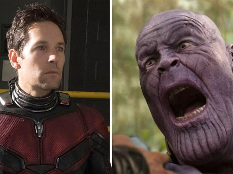 Disgusting but brilliant Avengers: Endgame theory is a horror film if we ever heard one