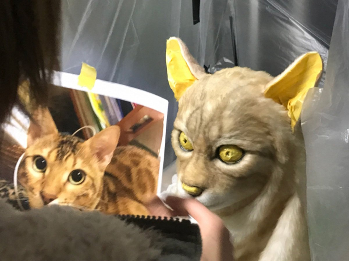 METRO GRAB - taken from the PR TIMES - PR material - must include link to shop website You can get creepy masks to match your pet's face Picture: PR Times