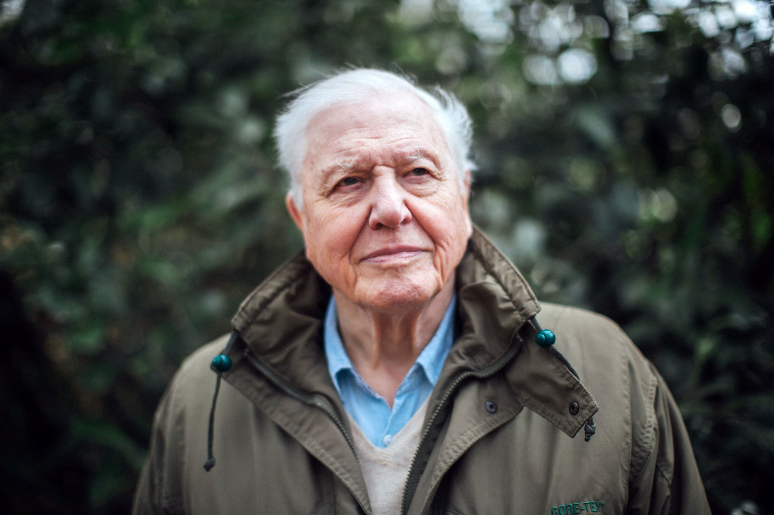 Sir David Attenborough who is returning to screens in Netflix's Our Planet