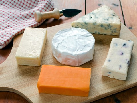 Adding cream, butter and cheese to food 'makes us happier', according to science