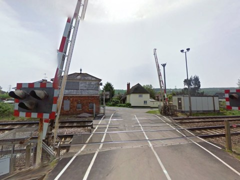 Driver killed after being hit by train at level crossing