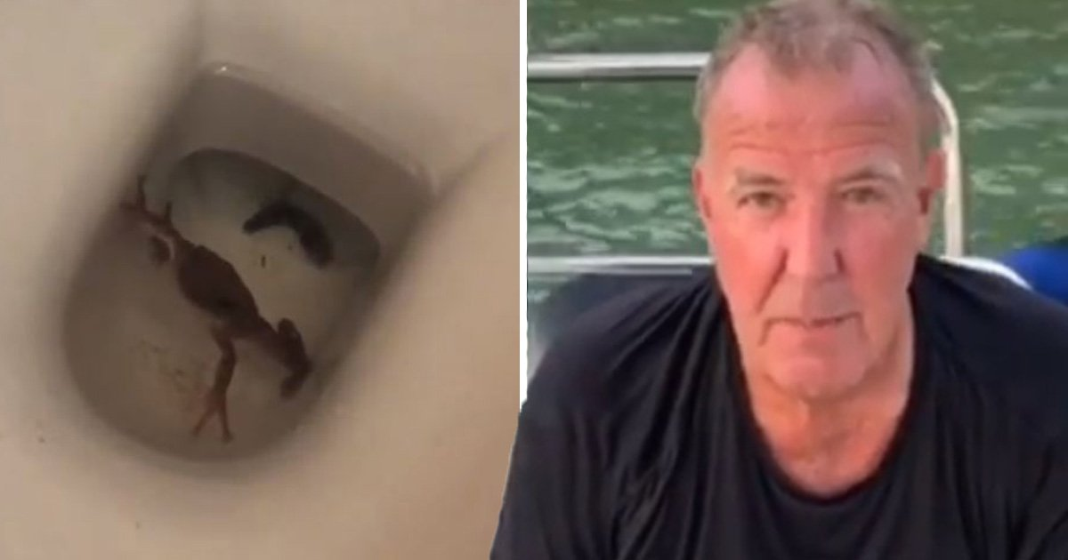 The Grand Tour's Jeremy Clarkson freaks out over toad in his toilet