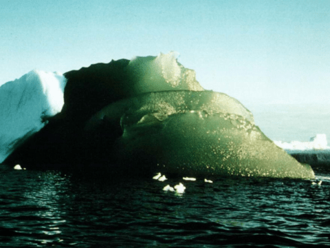 Weird green icebergs are floating around the ocean and now we finally know why