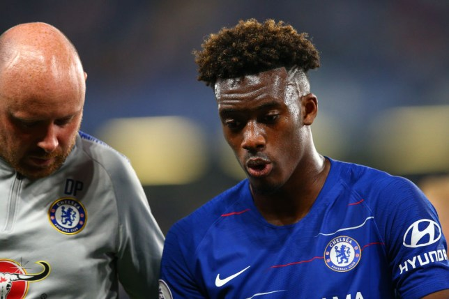 Callum Hudson-Odoi could be out for nine months