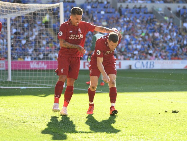 James Milner celebrates against Cardiff