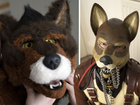 'Human pup', 37, likes to bark, lick and bite his friends