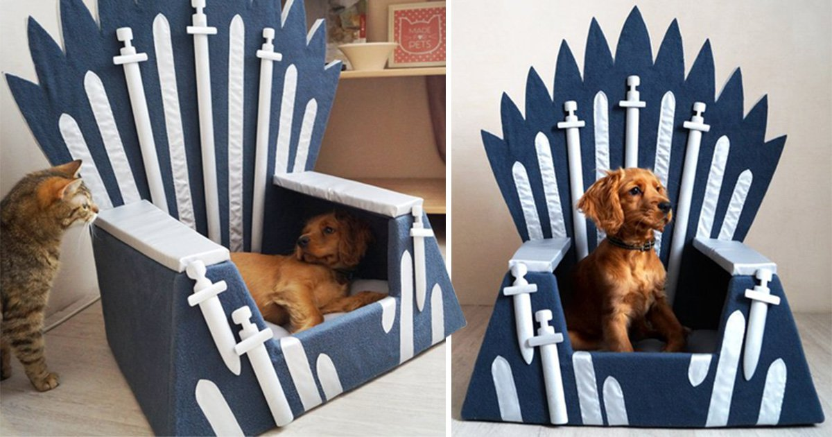 You can get a Game of Thrones Iron Throne pet bed so your dog or cat can be Ruler of the Seven Kingdoms