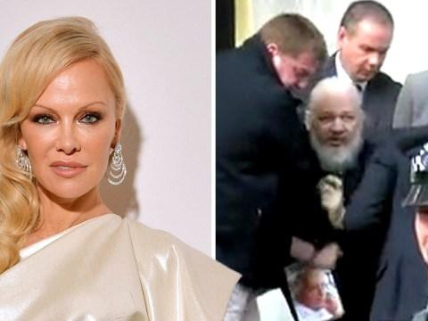 Pamela Anderson claims Julian Assange's arrest is 'diversion from idiotic Brexit'
