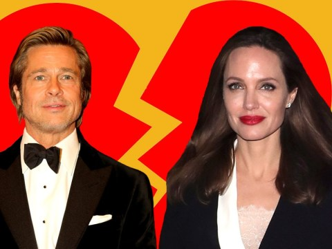Brad Pitt and Angelina Jolie 'file to restore single status' bringing them one step closer to divorce