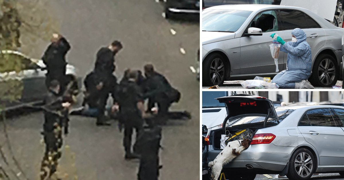 Police open fire after car 'deliberately rams' Ukrainian ambassador's vehicle in London