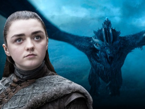 Game of Thrones fan guessed that Arya Stark and The Night King twist perfectly a year go – but no one believed them