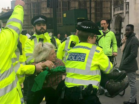 Army of police storm Parliament Square to arrest climate change protesters
