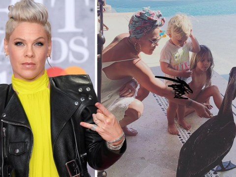 Pink won't post kids on social media anymore after trolls left her in tears