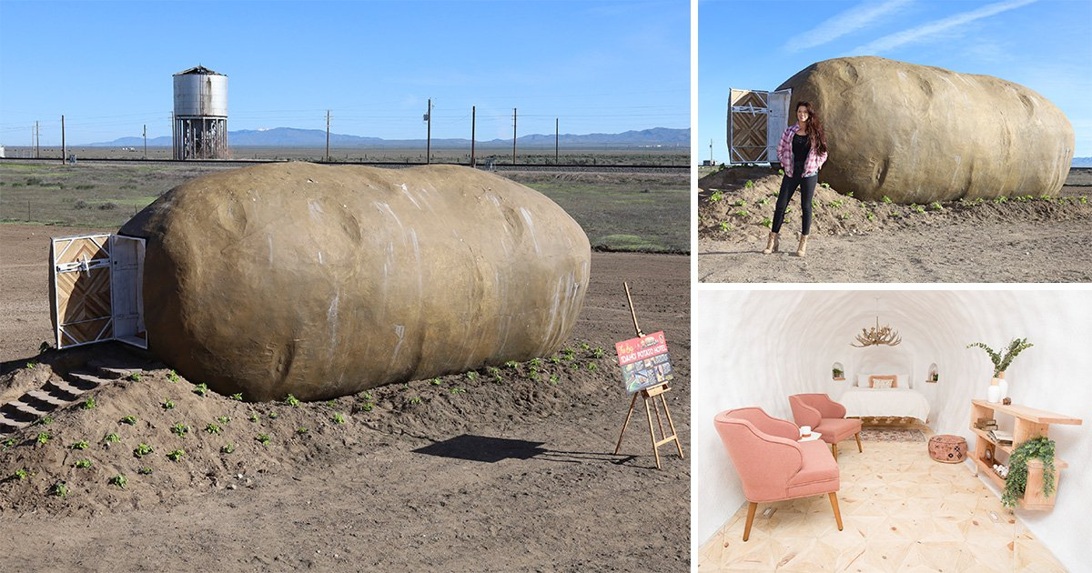 You can now live out your dreams of sleeping in a giant potato