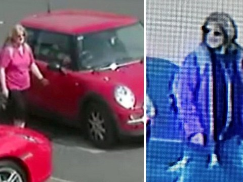 Police hunt middle-aged woman caught scratching cars on CCTV