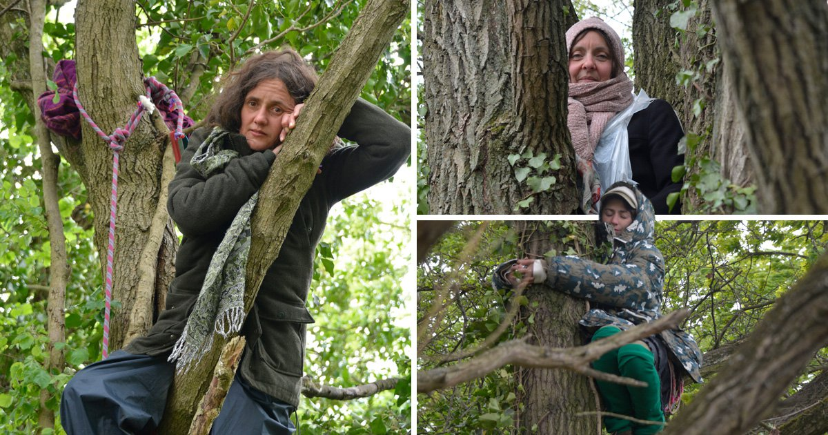 Activists are clinging onto trees to stop them being cut down (Picture: Sarah Martin Morante/PA)