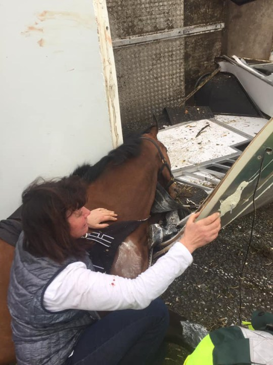 Picture of Karen Mclintock with Six-time winner Rockwood after the crash TRIANGLE NEWS 0203 176 5581 // contact@trianglenews.co.uk By Andy Crick A RACEHORSE died in the arms of his trainer after a vehicle towing him was involved in a 100mph horror road accident. Six-time winner Rockwood was being transported back after a race when the accident happened. Driver Graeme Scantlebury claims a van going the opposite way was veering towards them. But he said he couldn?t avoid the collision on the A15 at Waddingham near Lincoln and the side of their horsebox was ripped off.