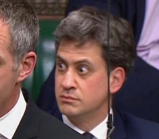 Ed Miliband reaction protest in house of commons