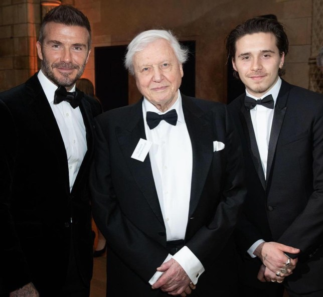 David Beckham, David Attenborough, Brooklyn Beckham at Netflix's Our Planet launch