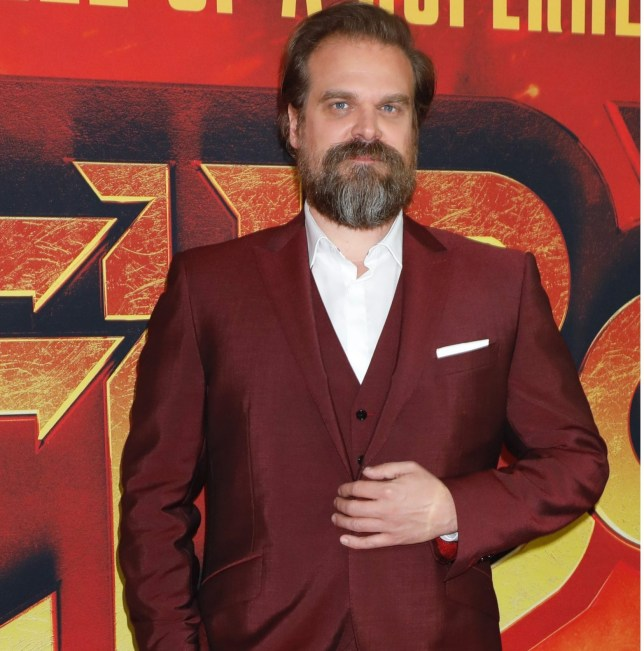 Mandatory Credit: Photo by Gregory Pace/REX (10196035y) David Harbour 'Hellboy' special film screening, Arrivals, New York, USA - 09 Apr 2019