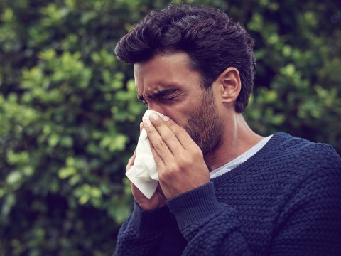 Hayfever sufferers told to stay inside as pollen season comes three weeks early