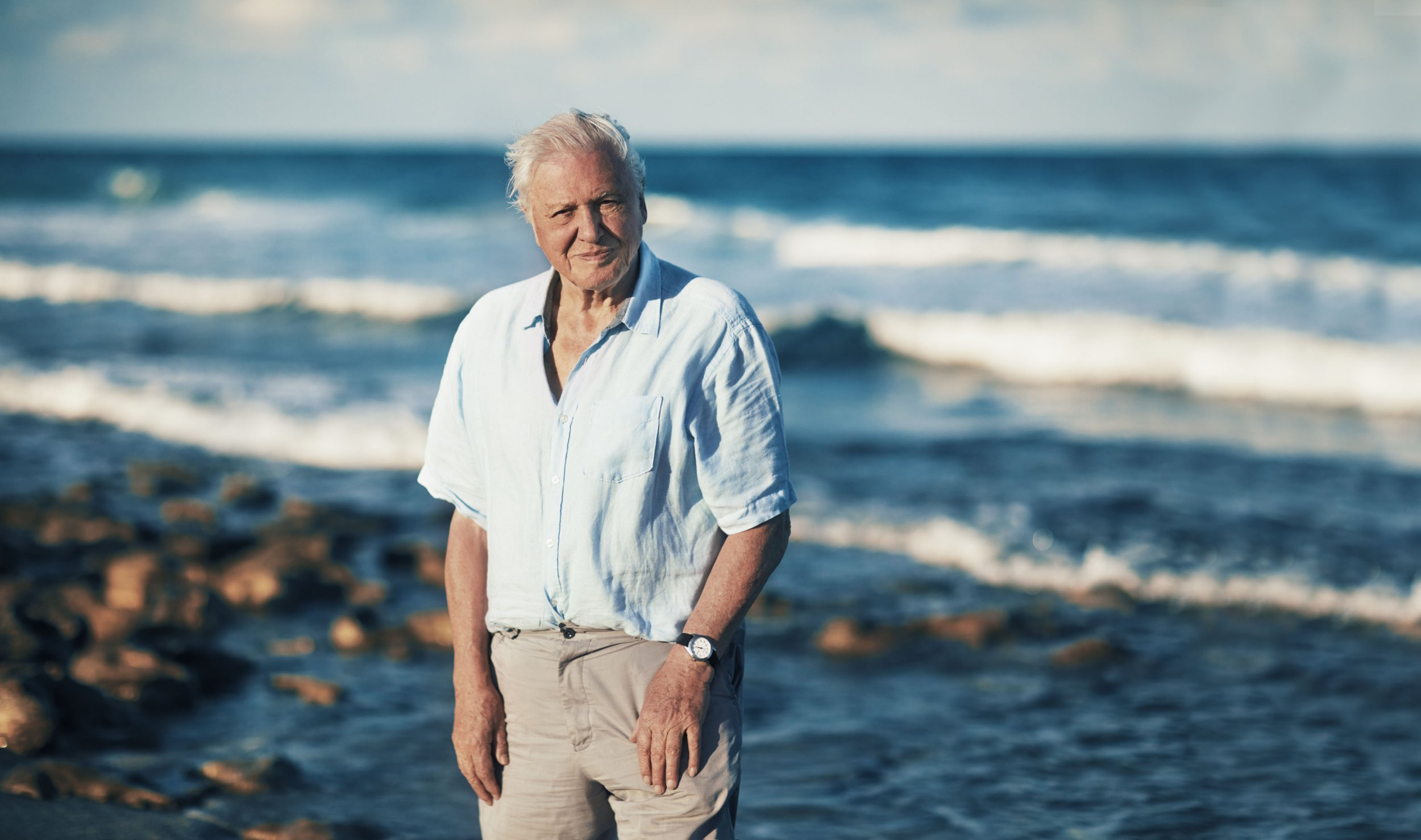 'Attenborough effect' leads to 53% drop in single use plastic in 12 months