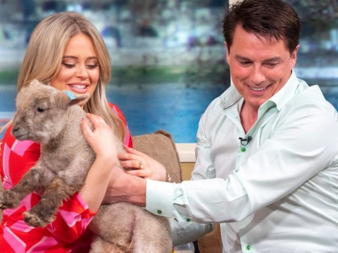 Emily Atack left screaming as she drops lamb after it poos on dress in epic live TV blunder