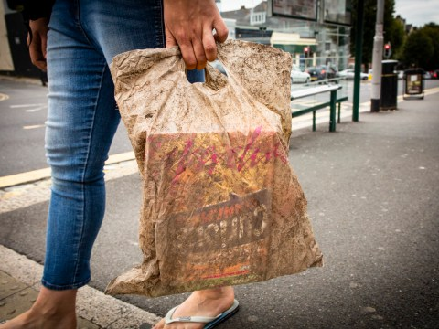 Biodegradable bags can still carry shopping three years after being buried