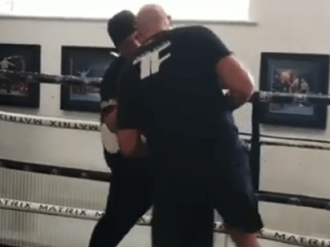 Tyson Fury drops coach with body shot during training for Tom Schwarz fight