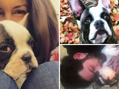 EastEnders star Lacey Turner reveals heartbreak as beloved French bulldog dies