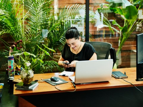 The best air-purifying indoor plants that will survive life on your desk