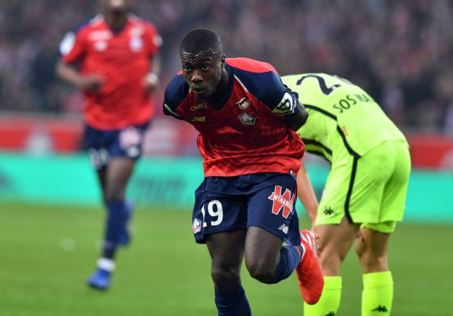 Lille's Ivorian forward Nicolas Pepe celebrates after scoring a goal during the French L1 football match between Lille (LOSC) and Angers (SCO) at the Pierre-Mauroy Stadium in Villeneuve d'Ascq, near Lille, northern France, on May 18 2019. (Photo by DENIS CHARLET / AFP) (Photo credit should read DENIS CHARLET/AFP/Getty Images)