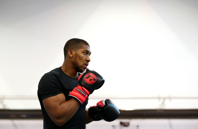 Anthony Joshua is eager to fight fellow champion Deontay Wilder next