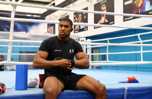 Anthony Joshua at an open workout