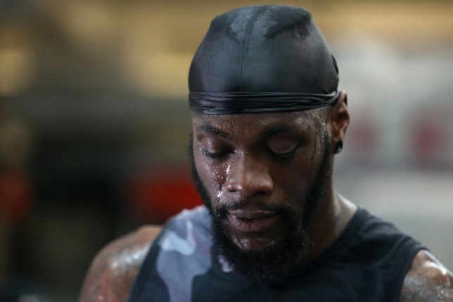 Deontay Wilder is back in the ring for the first time since his draw with Tyson Fury