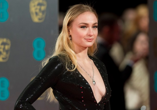 Sophie Turner on the red carpet