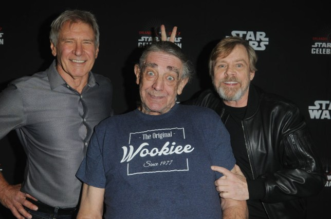 Star Wars actors Mark Hamill, Harrison Ford and Billy Dee Williams lead touching tributes to Chewbacca star Peter Mayhew