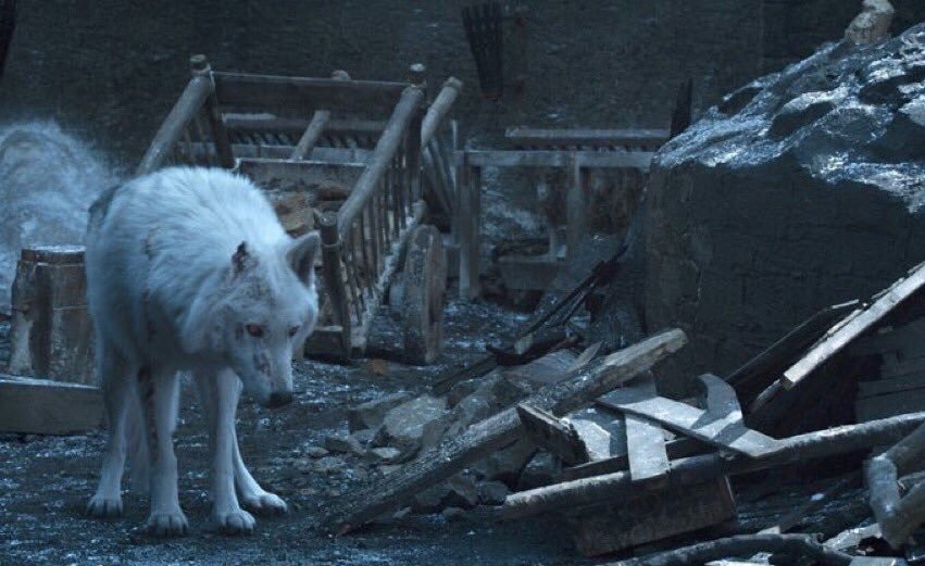 Ghost in Game of Thrones HBO