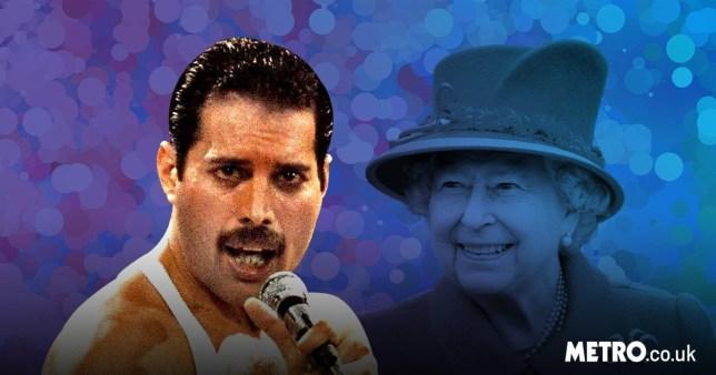 Freddie Mercury the Queen