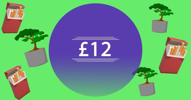 Poppy is a freelance writer living in London. She has £12 saved and is facing significant debt.