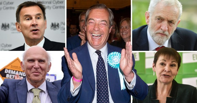Nigel Farage celebrates in reaction to European elections results